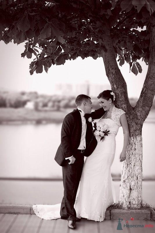 Фото 57907 в коллекции Свадебные фотографии - Фотограф Мария Ширяева (KAIOSHK)