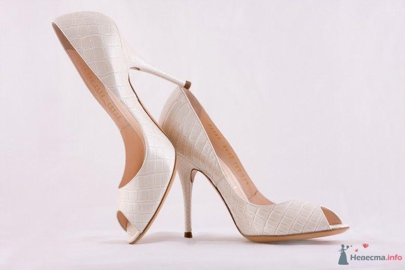 Мои туфельки - фото 31255 kuk-l-a