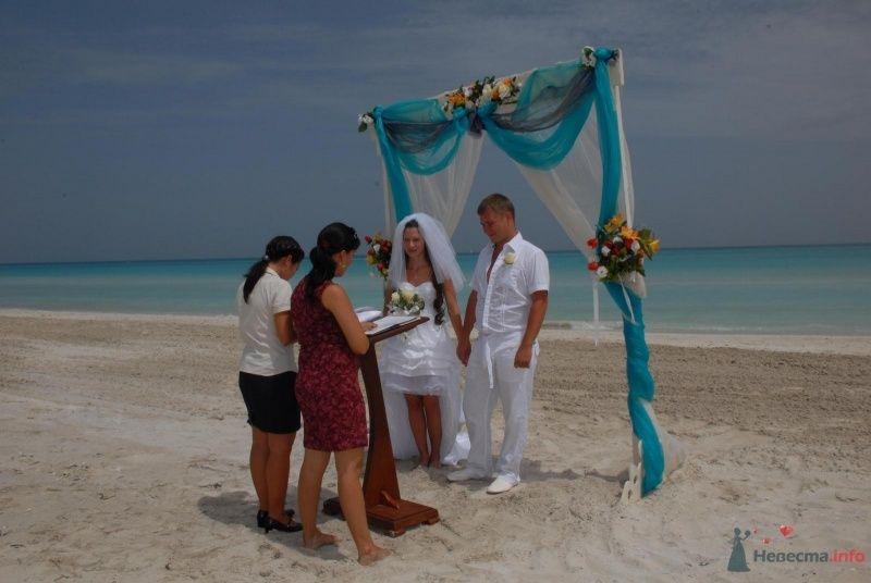 Регистрация на пляже - фото 29626 Olenka