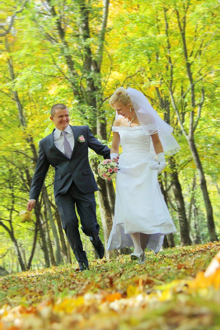 Фото 9636790 в коллекции Свадебные фоторгафии - Фотограф  и видеограф Алексей Перов