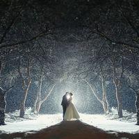 свадьба декабрь  2014