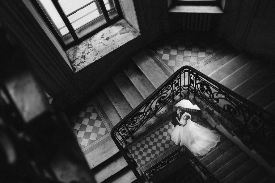 Фото 14399724 в коллекции Портфолио - Фотограф Алина Старкова