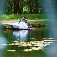 свадьба в Пушкине, парк, озеро, вода