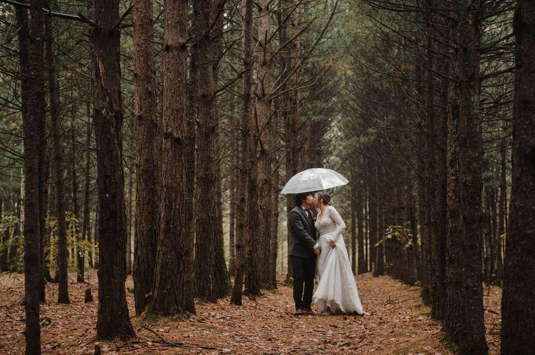 свадебный фотограф Хабаровск - фото 19100696 Фотограф Наталья Меньшикова