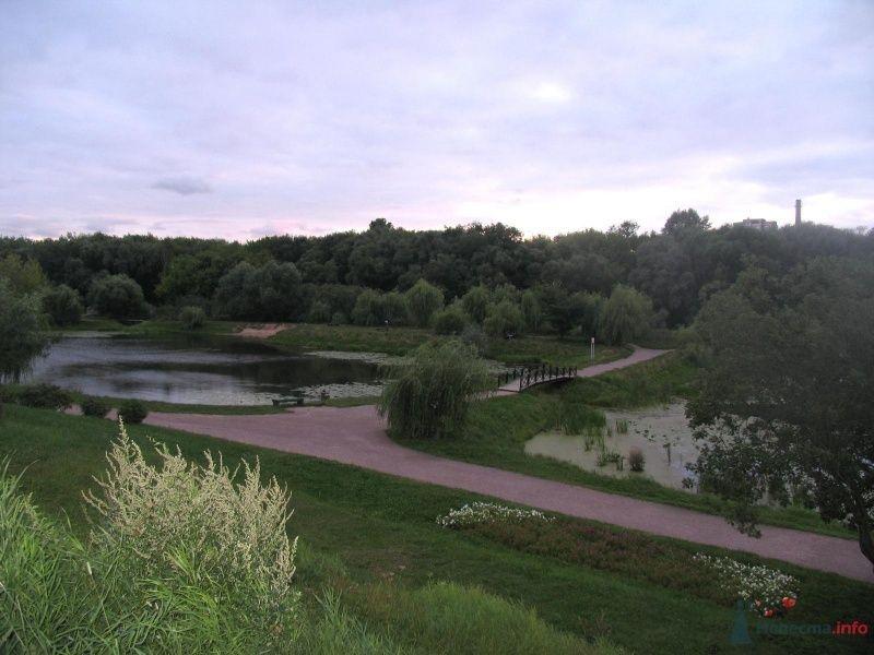 вид на пруды сверху - фото 36304 Нюшка Менделеева