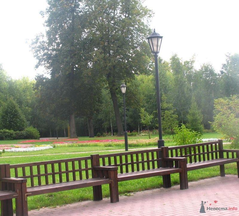 скамеечки - фото 36636 Нюшка Менделеева