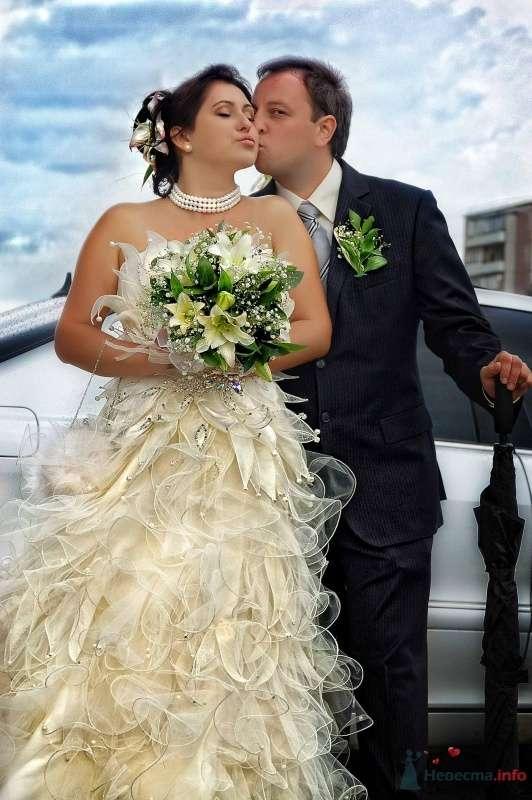 Фото 36131 в коллекции Свадьба 15.08.2009 - KellerKS