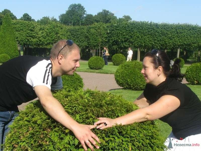 Фото 38740 в коллекции Лето 2009...  - Ксюньчик
