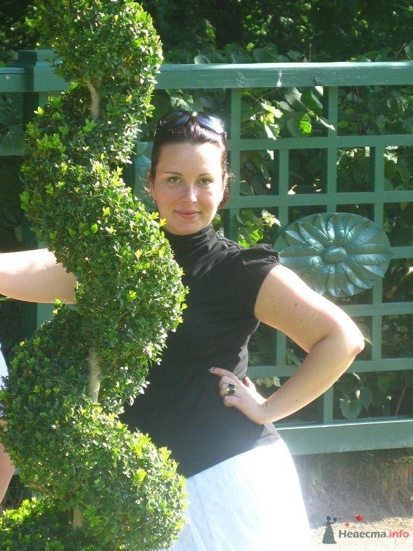 Фото 38742 в коллекции Лето 2009...