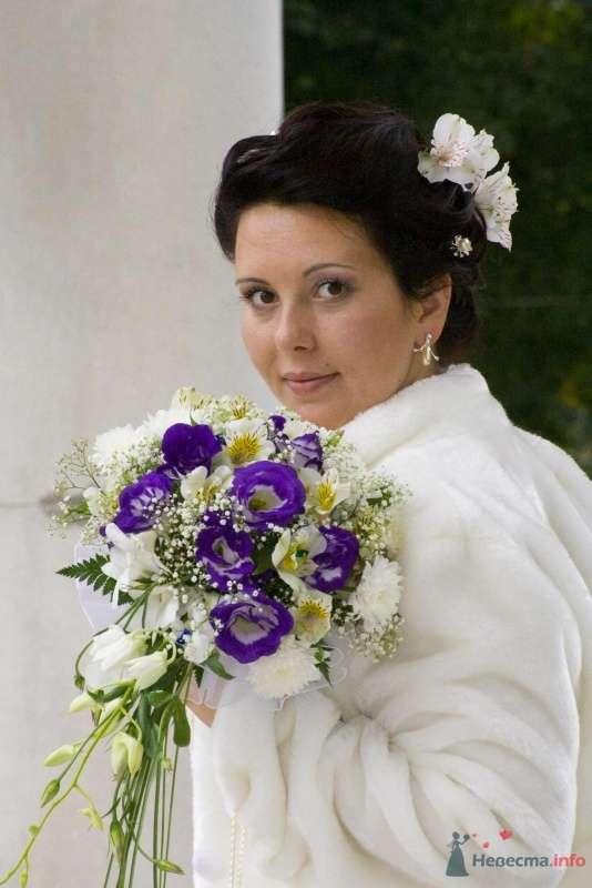 Фото 47096 в коллекции Свадьба - Ксюньчик