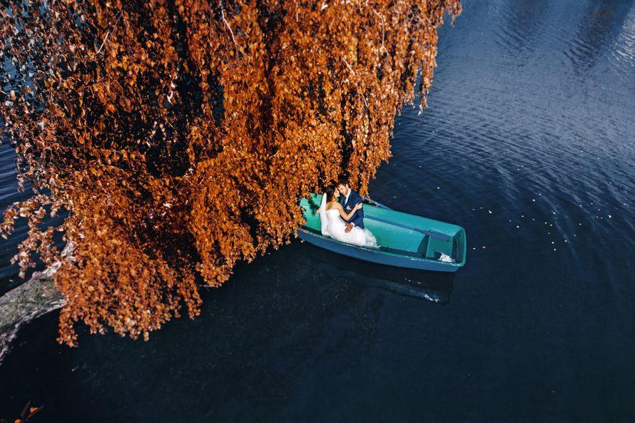 Фото 10198270 в коллекции портфолио - Фотограф Сергей Разумный