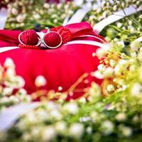 Красная подушечка для колец Елены и Сергея
