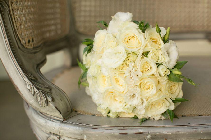 Фото 10453816 в коллекции Портфолио - Мирабелла свадебное агентство