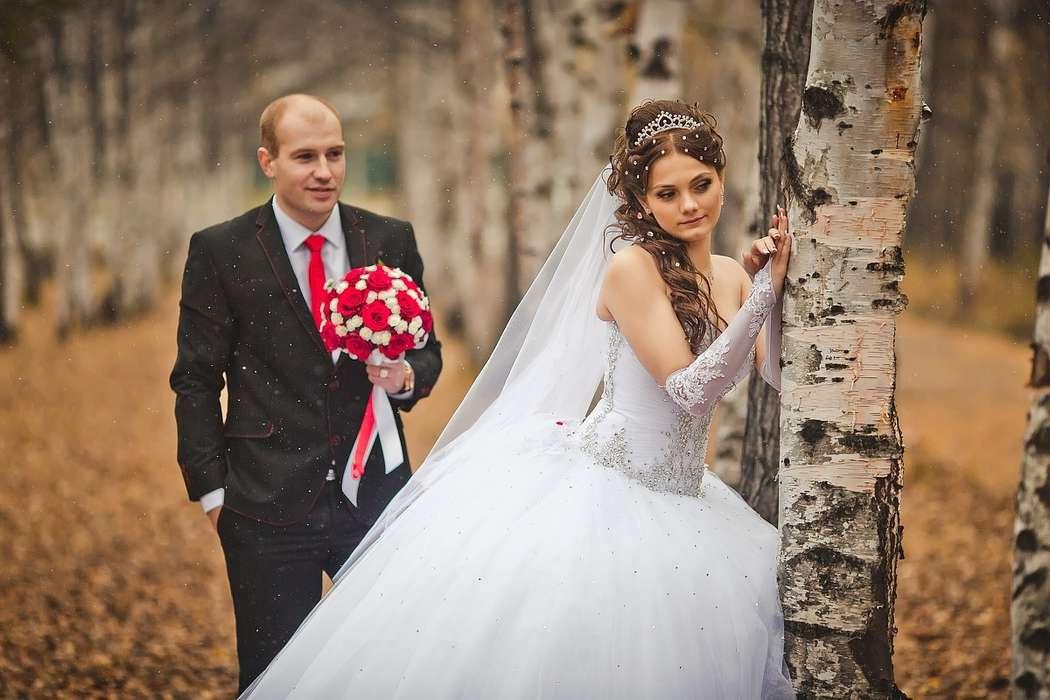 Фото 10420690 в коллекции Свадебные фотосессии - Фотограф Царенок Владимир