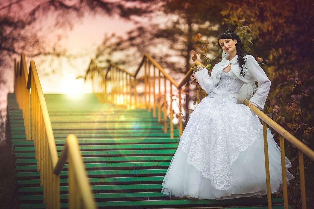 Фото 10420692 в коллекции Свадебные фотосессии - Фотограф Царенок Владимир