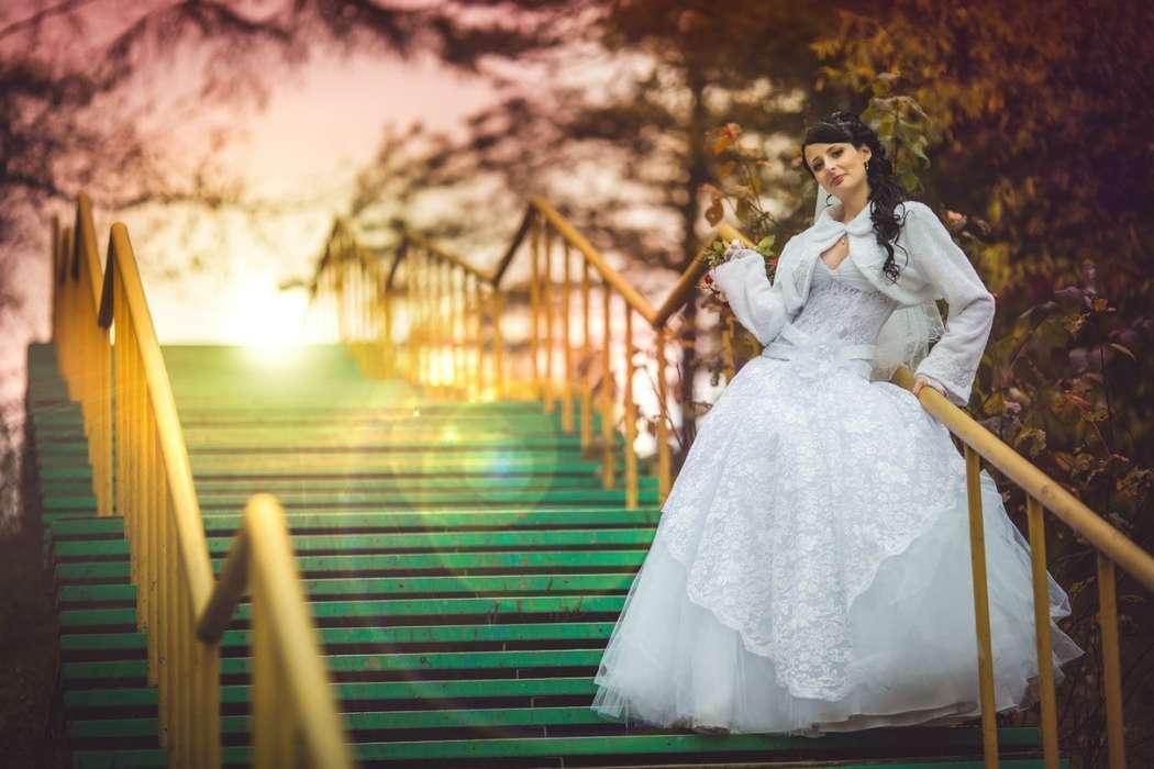 Фото 10608194 в коллекции Свадебный - Фотограф Царенок Владимир