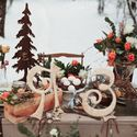Свадьба Зимой. Фотосессия в зимнем лесу