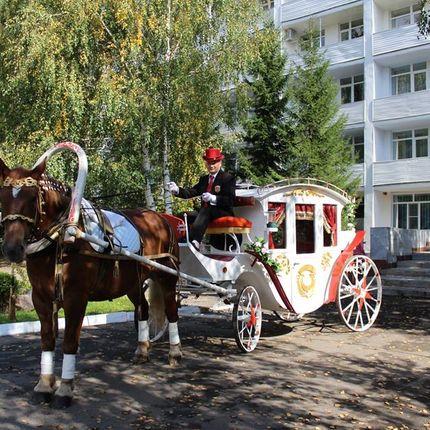 "Свадьба на берегу озера в профилактории ""Морозовский"""