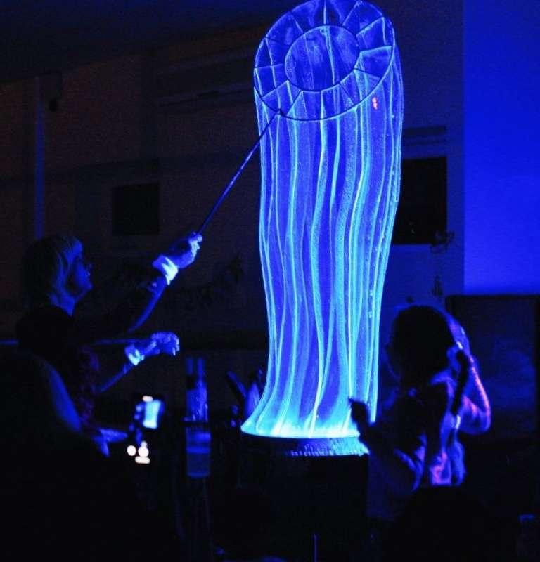 """Фото 17144226 в коллекции Свадебное шоу пузырей - Шоу мыльных пузырей """"Магия"""""""