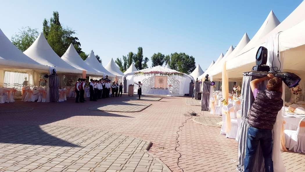 Фото 10577480 в коллекции 1 - Агенство Velvet Wedding