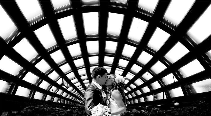 Фото 617149 в коллекции Мои фотографии - Illusion Wedding cinema studio
