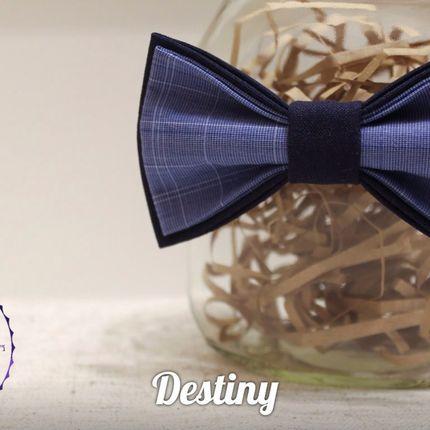Бабочка Destiny