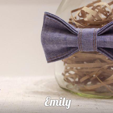 Бабочка Emily