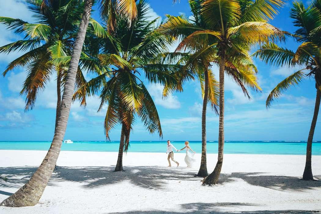 Фото 14493430 в коллекции Официальная свадьба в Доминикане на пляже Juanillo в Кап Кане {Сергей и Кристина} - Caribbean Wedding - свадьба в Доминикане