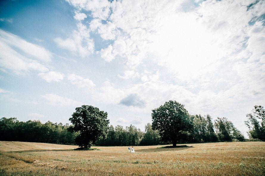 Фотосъёмка неполного дня 8 часов - пакет Оптимальный