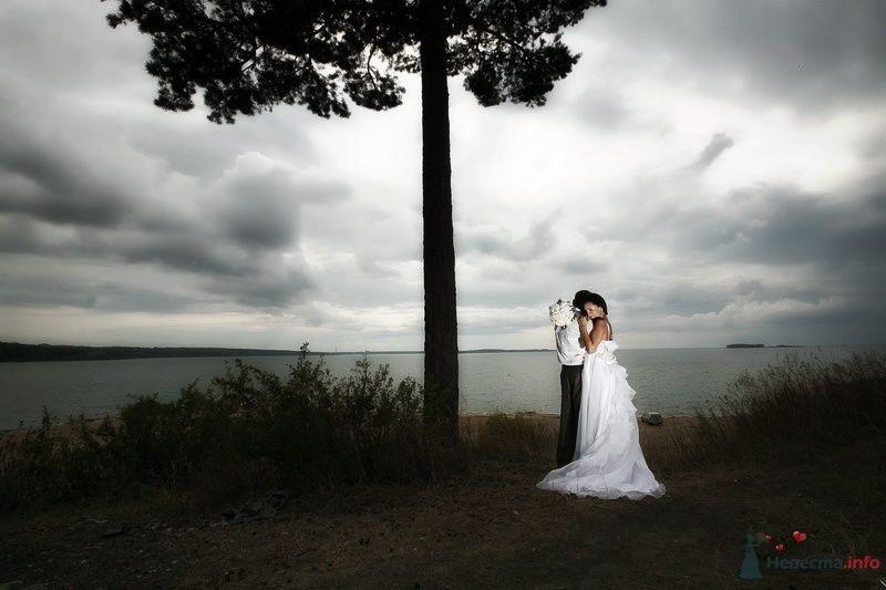 Жених и невеста стоят, прислонившись друг к другу, стоят возле дерева в поле - фото 58272 Юлия14