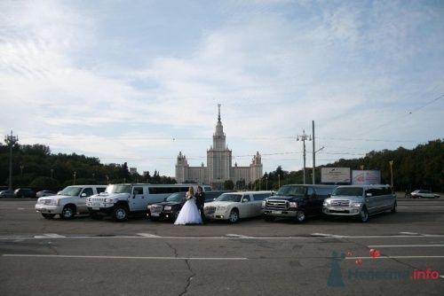 Лимузины на свадьбу. - фото 932 Limo-pro лимузины на свадьбу