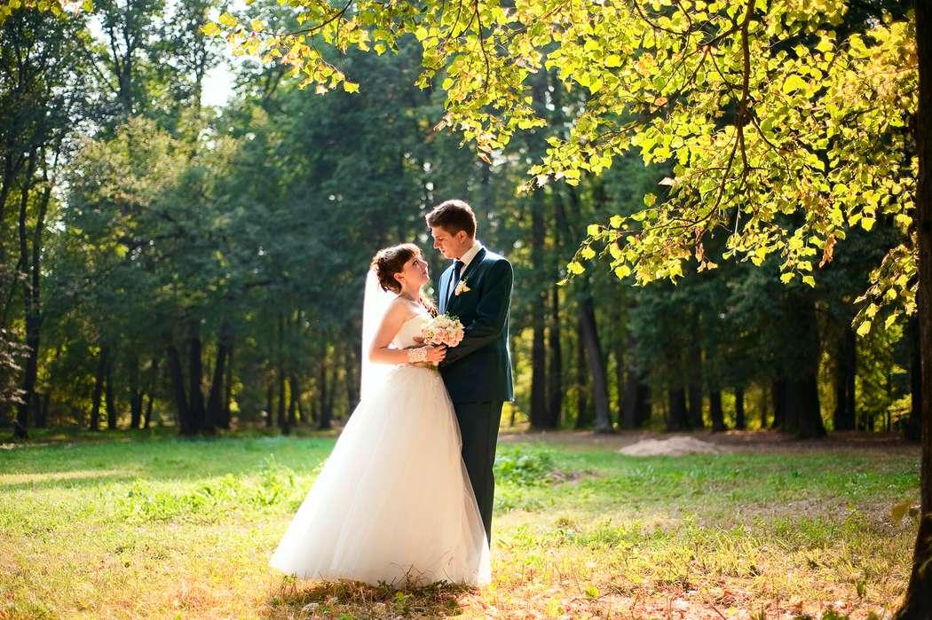 Фото 7269926 в коллекции Свадьбы  2014 - Фотограф Наталья Канищева