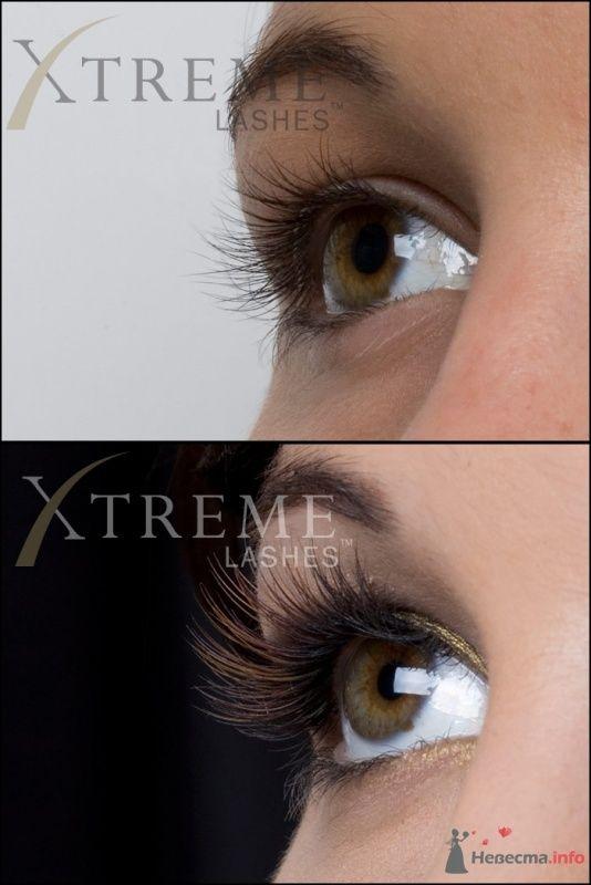 Фото 33525 в коллекции Официальная фотосессия Xtreme Lashes - Мастер по наращиванию ресниц - Екатерина Коршунова