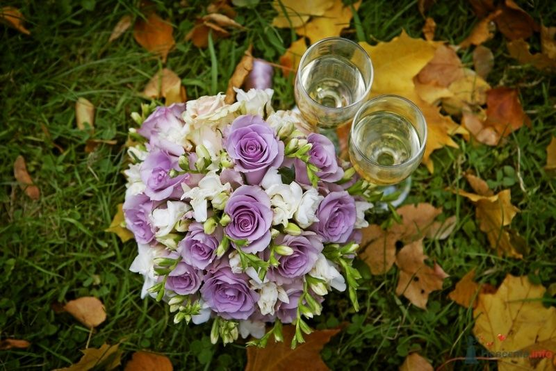 Букет невесты из белых фрезий и сиреневых роз  - фото 62349 Busic