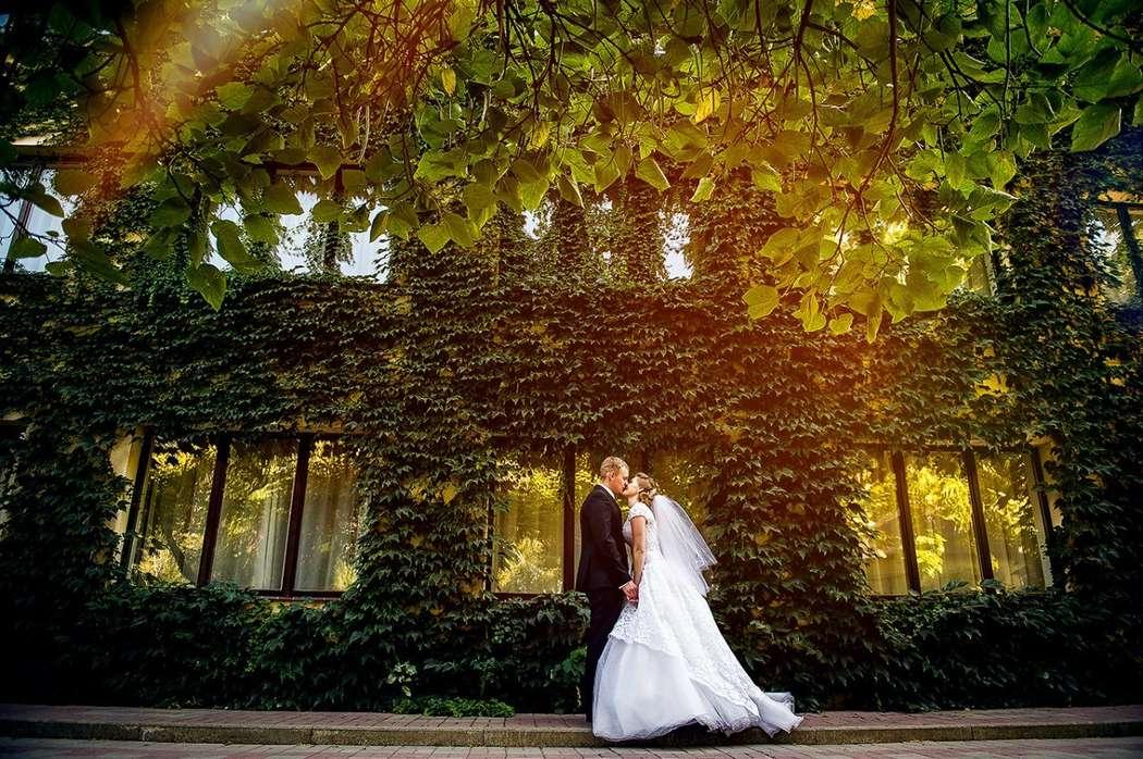 что понадобится свадебные фотографы ростова на дону работы образом, качество