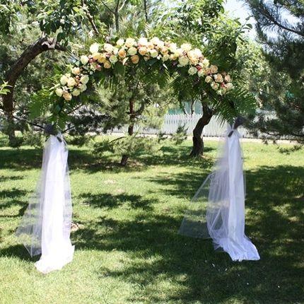 Свадебная арка с живыми цветами и декором