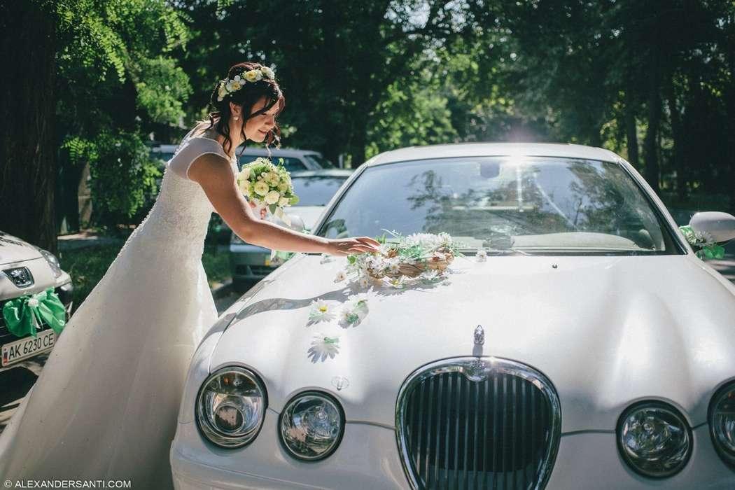 """Фото 11441250 в коллекции Свадебные платья """"Раз и навсегда"""" - Свадебный салон """"Раз и навсегда"""""""