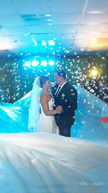 """Фото 11560220 в коллекции свадьба ЗИМА - Видеосъёмка """"Alfa-studio"""""""
