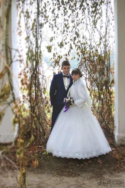 """Фото 11560250 в коллекции свадьба ОСЕНЬ - Видеосъёмка """"Alfa-studio"""""""