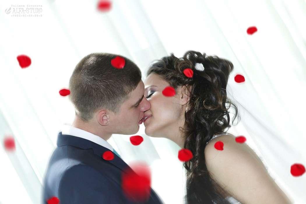 "Фото 11560258 в коллекции Свадьба Весной - Видеосъёмка ""Alfa-studio"""