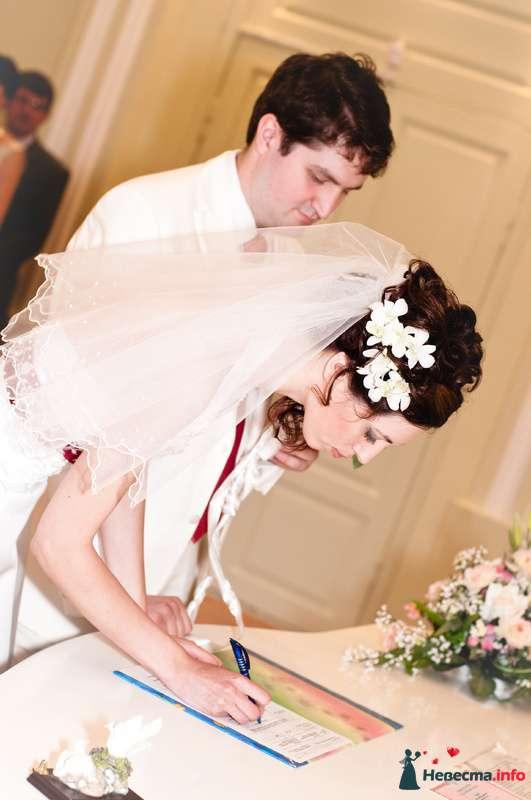 Фото 118070 в коллекции Свадебные - Mitiko