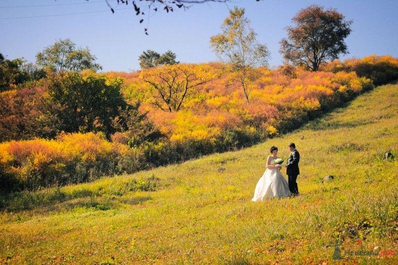 Жених и невеста стоят вместе на траве в осеннем поле - фото 57639 Солнышонок