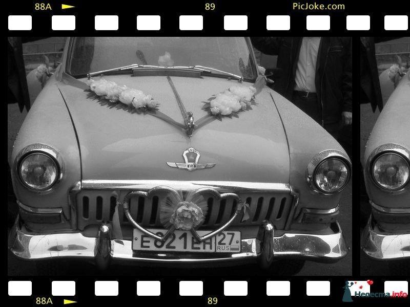 Фото 465366 в коллекции Мои фотографии - Газ21 - авто на свадьбу