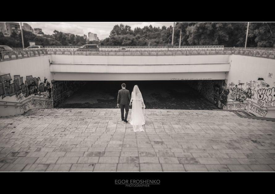 "Фото 11718834 в коллекции свадебное портфолио - Фотосъёмка ""Domino"""
