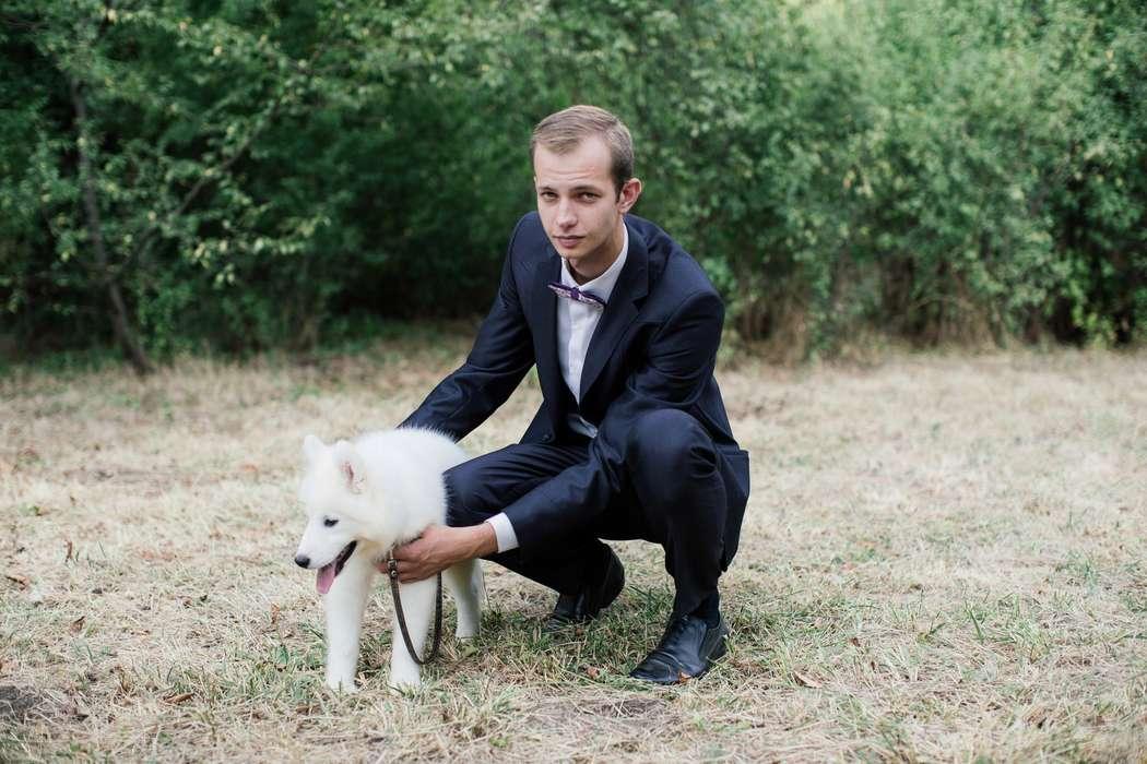 """Нестандартные свадебные фотосессии с животными!!!! - фото 11973858 """"Сто зверей"""" - агентство дрессированных животных"""