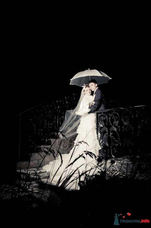 Поздний вечер, дождь - фото 470542 Студия Profoto2g - фотографы