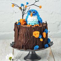 Детский торт-пенёк ,имитация которого создана из натурального тёмного шоколада. Украшает пенёк фигурка совы и маленькие бутончики роз из сахарной пасты.