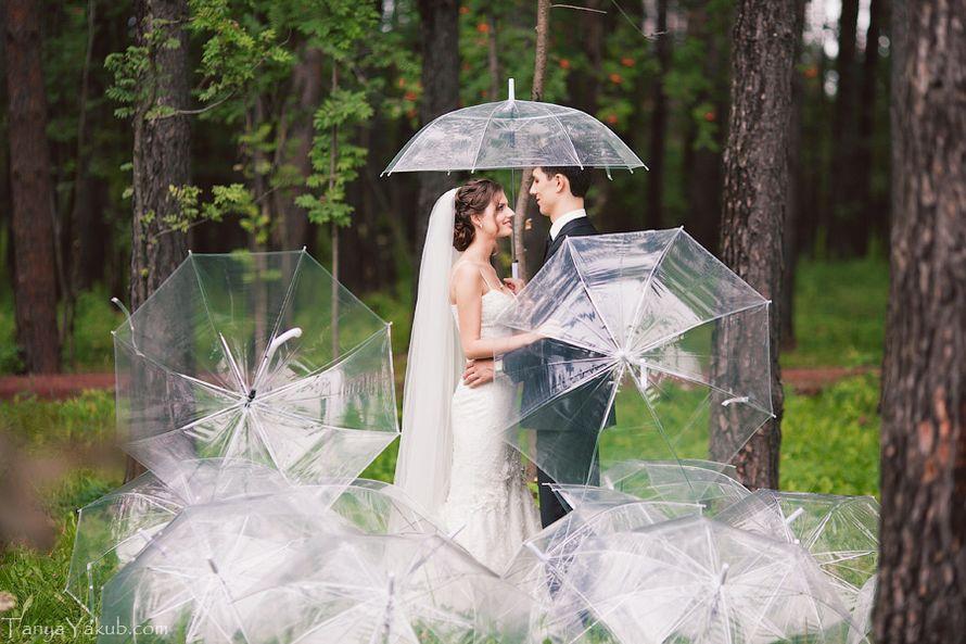 командная военно-тактическая зонт для свадебной фотосессии стоит