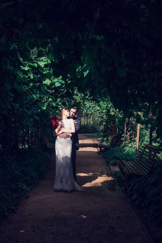 Фото 17096298 в коллекции Свадебные съемки - Фотограф Александра Вишлева