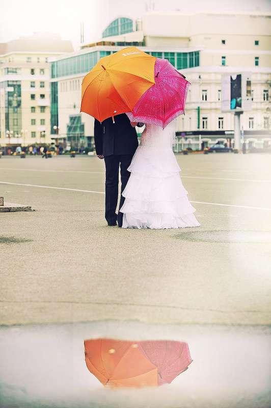 Фото 13363292 в коллекции Такие разные свадьбы - Фотограф Дмитрий Зеленский